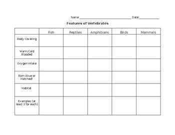 Features of Vertebrates