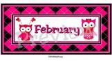 February Calendar Owls