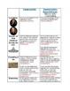 Federalists vs. Democratic-Republicans Webquest Comparison Chart