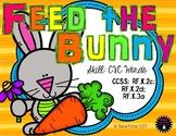 Feed the Bunny CVC Words Kindergarten Easter File Folder G