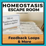 Feedback Loops & Homeostasis.  Review Escape Room.