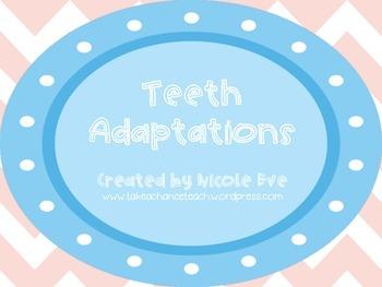 Notes: Feeding Adaptations - Teeth