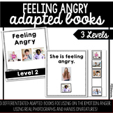 Feeling Angry Adapted Book | 3 Differentiated Books Included!