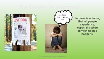 Feeling Emotions in Our Bodies; Sadness; Emotional Regulation; Lesson 5