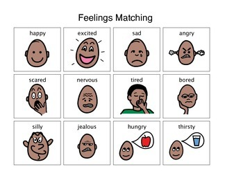 Feelings Activity Matching