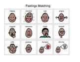 Feelings Activity Matching