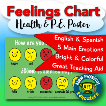 """Feelings """"Touchable"""" Assessment Health and Physical Education Poster"""