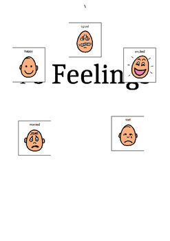 Feelings Social Story - editable