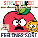 Feelings Sort Task Boxes for Preschool and Special Educati