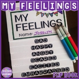 Feelings and Emotions Activity