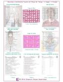 Feelings and Emotions Spanish 4 Worksheet-2 Game-1 Exam Bundle