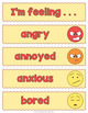 Feelings and Emotions Word Wall Vocabulary Slips