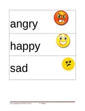 Feelings/Emotions Picture Vocabulary Cards