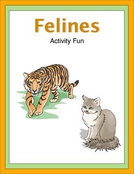 Felines Activity Fun