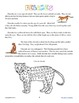 Felines Thematic Unit