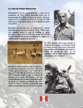 Felipe Benavides Perú/Vicuña Spanish Reading