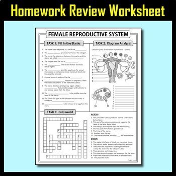 Female & Male Reproductive Systems COMBO BUNDLE {Editable}