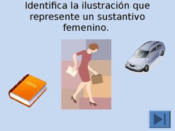 Femenino y Masculino (Spanish)