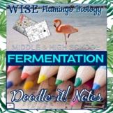 Fermentation Doodle Notes