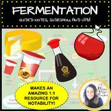 Fermentation Lesson and Lab