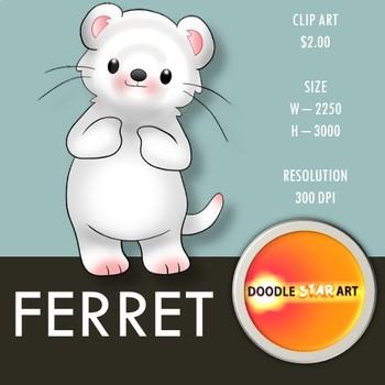 Ferret Clip Art