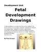 Fetal Development Drawings