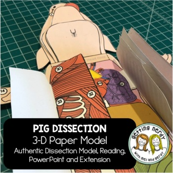 Fetal Pig Paper Dissection - Scienstructable 3D Dissection Model
