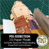 Fetal Pig Paper Dissection - Scienstructable 3D Dissection Model