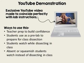 Basic Biology: Fetal Pig Dissection Laboratory