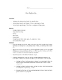 Fiber Analysis (w Flame Test) Lab