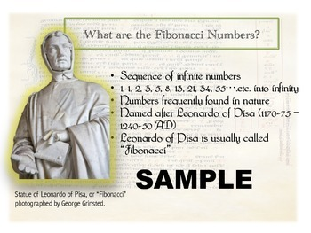 Fibonacci Numbers in Nature with PPT, Lapbook & Notebook Templates!