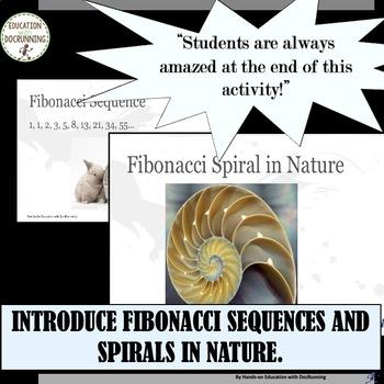 Fibonacci Sequence and Ratio Activity