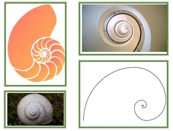Fibonacci sequence. Number patterns and sequences.