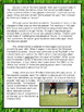 Fiction & Nonfiction Test Prep - Soccer