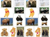 Fiction and Non-Fiction Bear Sort