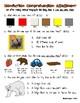 Fiction and Nonfiction Kindergarten CCSS Comprehension Reading Assessments