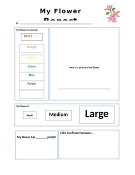 Field Journal Observation Worksheets