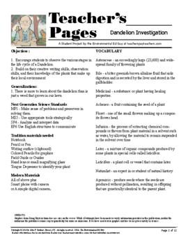 Field Research on Dandelions