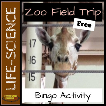 Field Trip to the Zoo: Bingo Activity
