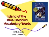 5th Grade Vocab Pearson Reading Street Unit 1 Week 3 PP - Island of the Blue D
