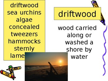 5th Grade Vocabulary Pearson Reading Street Unit 2 Week 1 PP - At the Beach