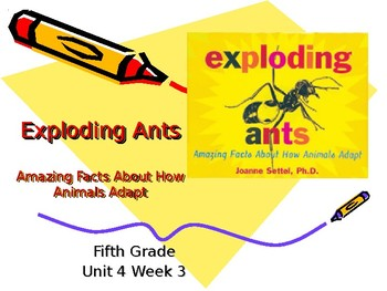 5th Grade Vocabulary Pearson Reading Street Unit 4 Week 3 PP - Exploding Ants