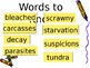 5th Grade Vocabulary Pearson Reading Street Unit 6 Week 2 PP - The Mystery