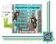 Figurative Language Digital Boom Cards Task Cards