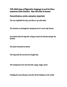 Figurative Language in Hatchet