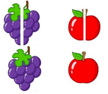 File Folder- Matching Fruit