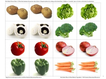Four Autism File Folder Activities - Picture & Word Match, Vegetables