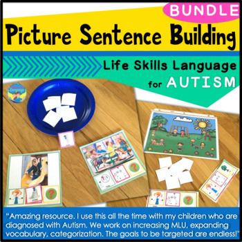 Autism Activities: File Folder Picture Sentence Building-