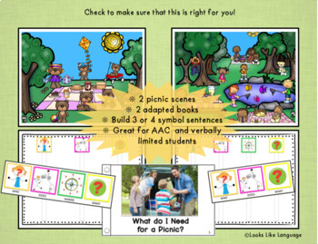 Autism File Folder Sentence Building Activities for Picnics