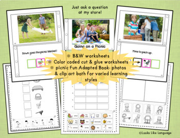 File Folder Games | Adapted Books | Sentence Building | Picnic Activities